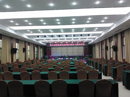 重庆青杠街道会议室采用稀客超薄系列音响
